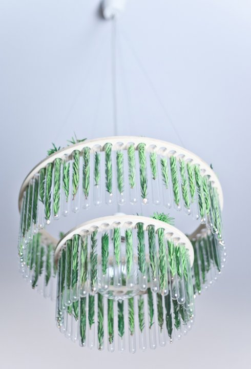 Luminaire végétal à changer au gré de ses envies