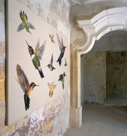 Collection Colibri by Alexander McQueen