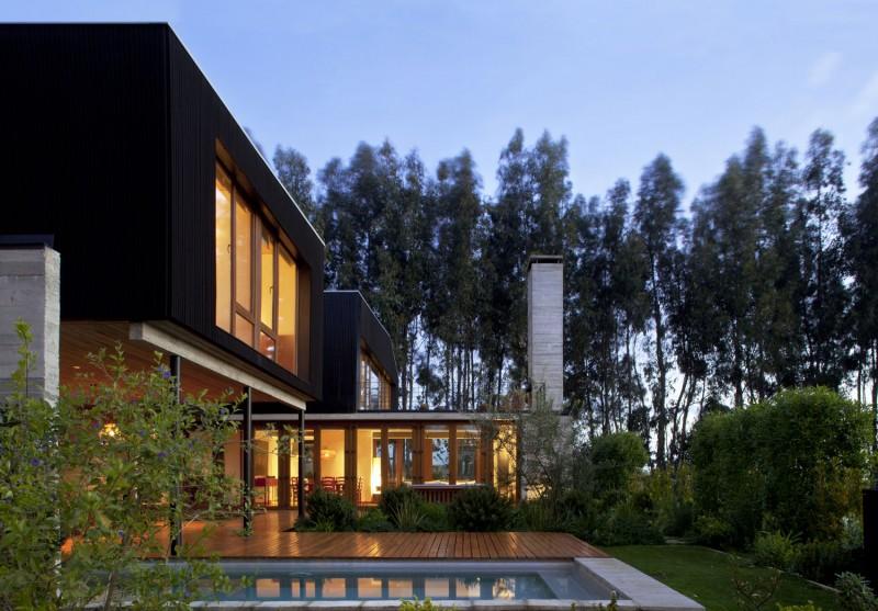 Patio aménagé avec coin détente, bassin naturel et cuisine d'extérieur