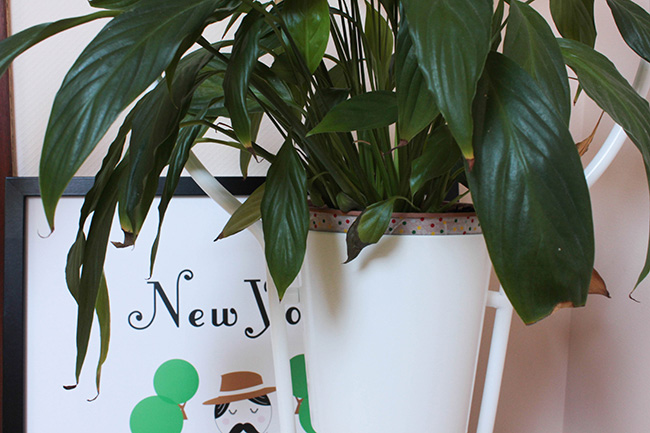 My home my deco 3 frenchy fancy - Ikea plantes vertes ...