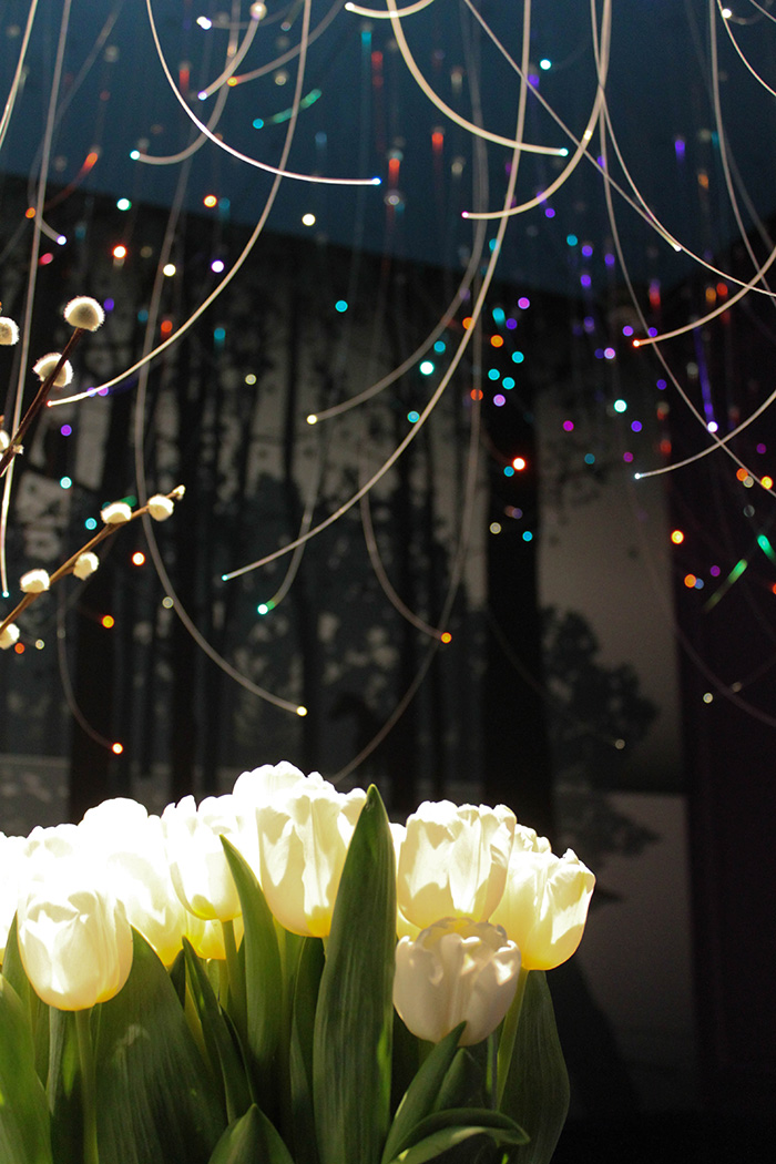 Plafond avec Leds de toute les couleurs