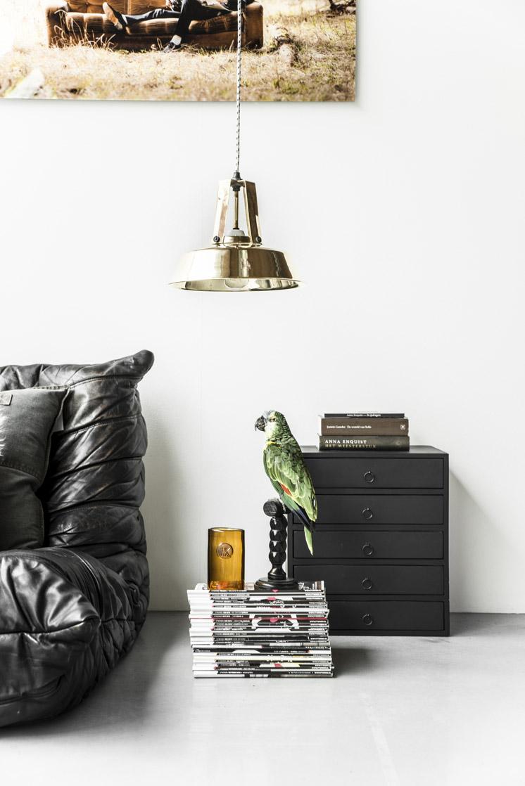 Interior by Paulina Arcklin