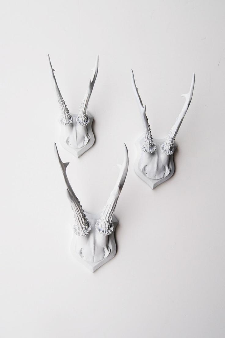 Bois de cerf décoration