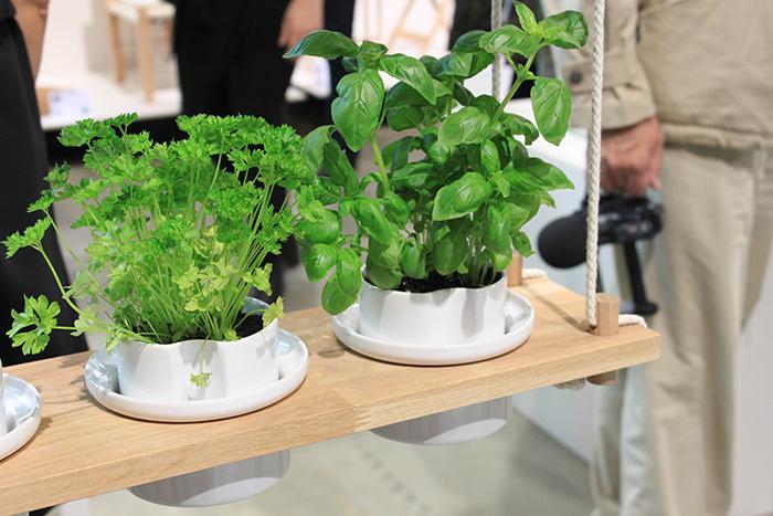 Pot design plantes vertes