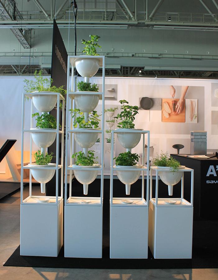 Aménagement plantes vertes design
