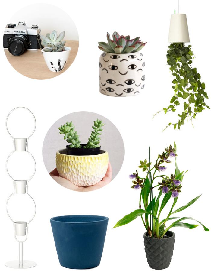 8 jolis pots pour vos plantes vertes