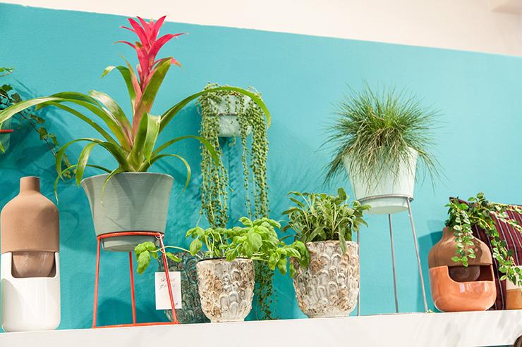 Peinture murale marque Ressource bleu turquoise