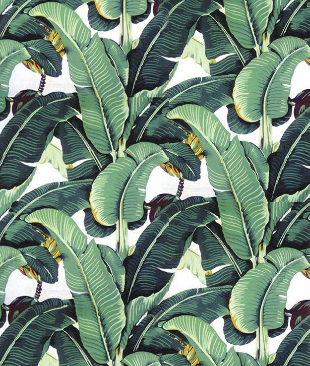 Papier peint tendance tropicale