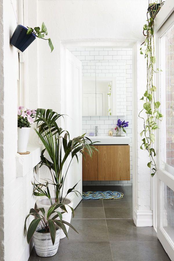 Des plantes vertes dans la salle de bain frenchy fancy - Plante pour salle de bain ...