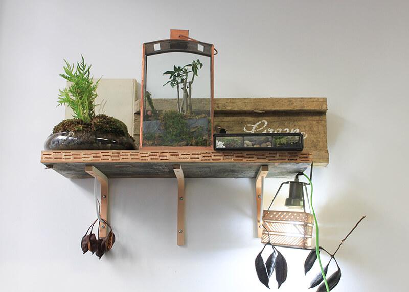 Entretien des plantes vertes en intérieur