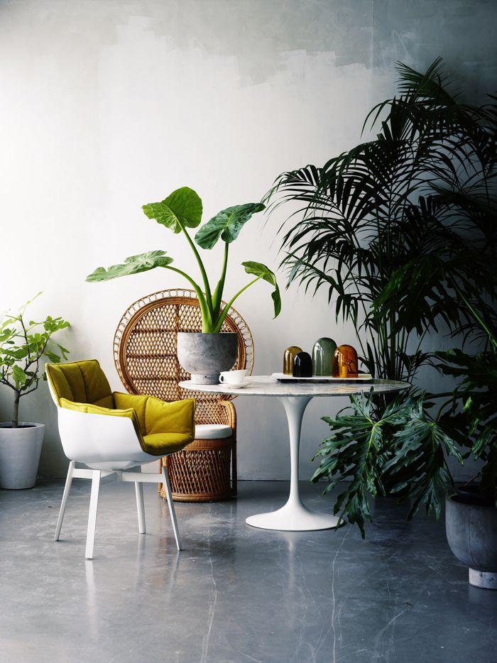 Tendance : le mobilier en rotin