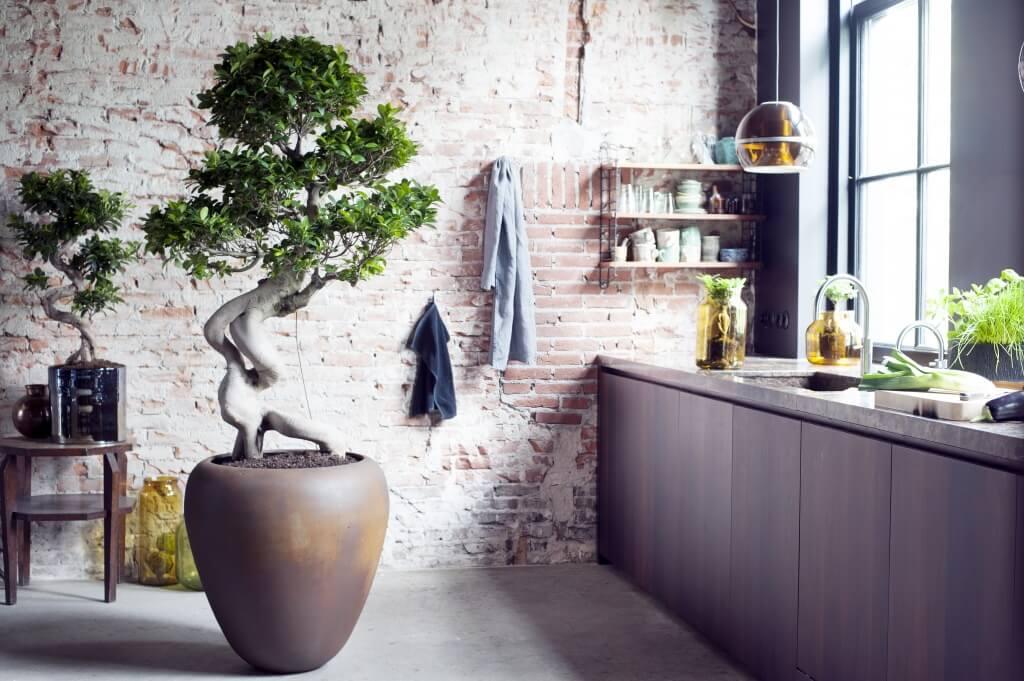 Décoration cuisine style loft