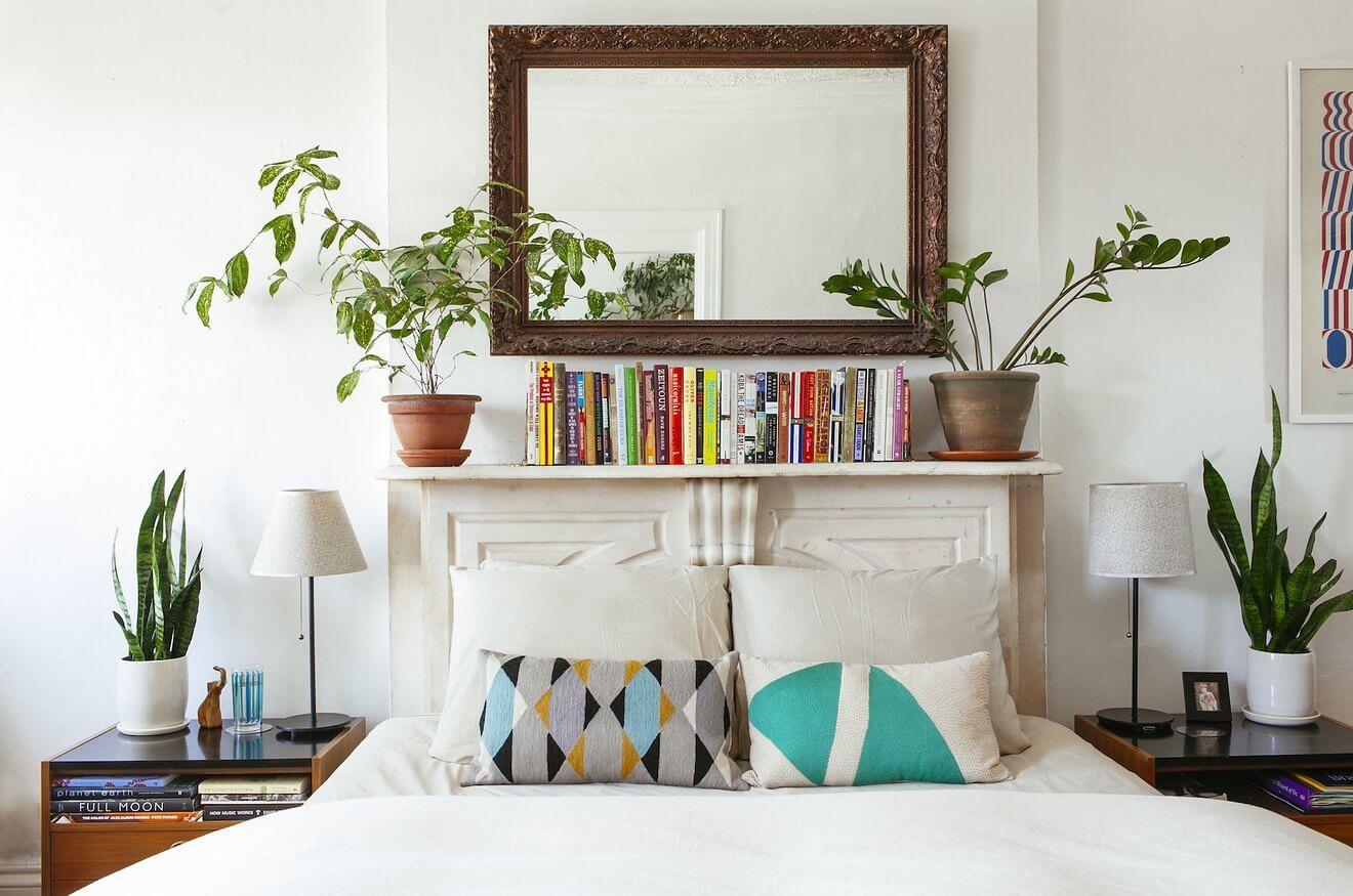 Utiliser les plantes vertes en décoration