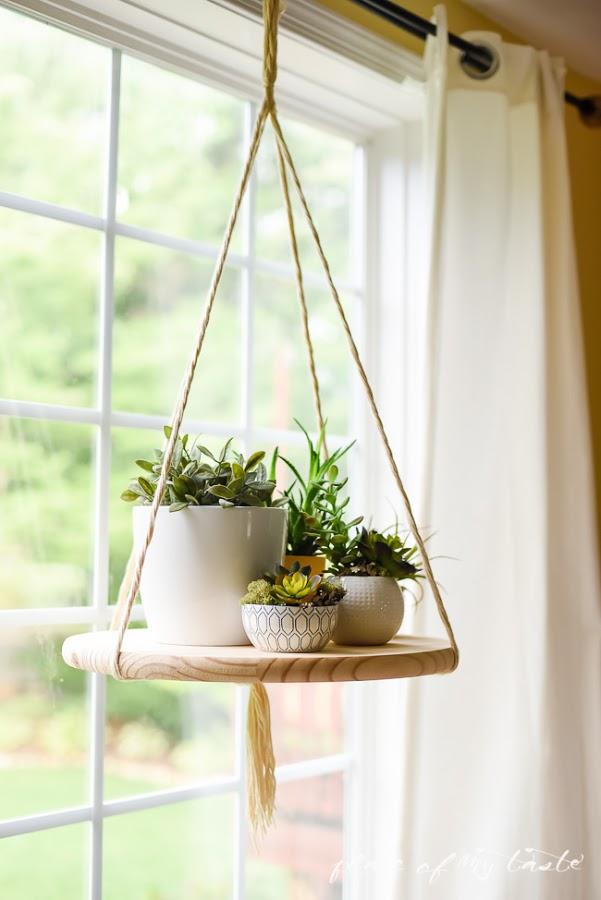 DIY pour plante verte