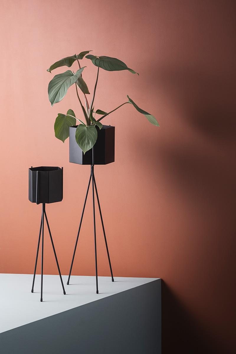 Support pour plante